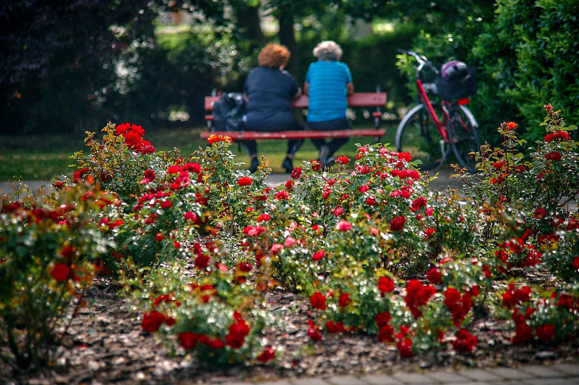 Virágzó Szombathely