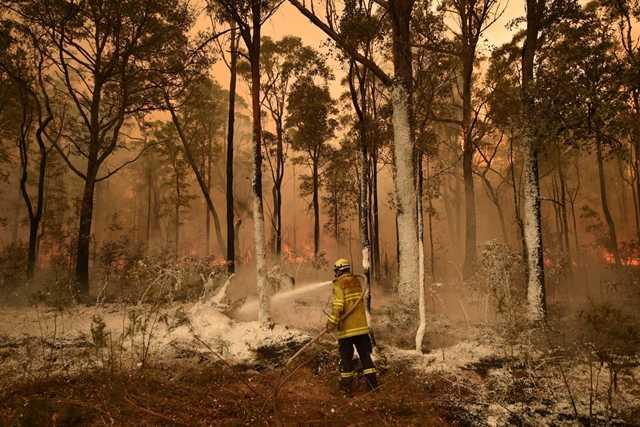 ausztrál bozóttűz