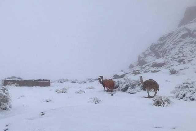 Havazik az arab sivatagban