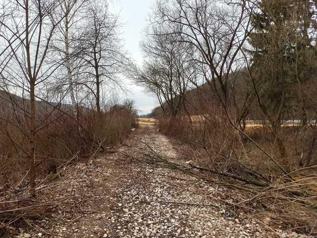 A kitisztított vasúti pálya a kőszegi határátkelő közelében