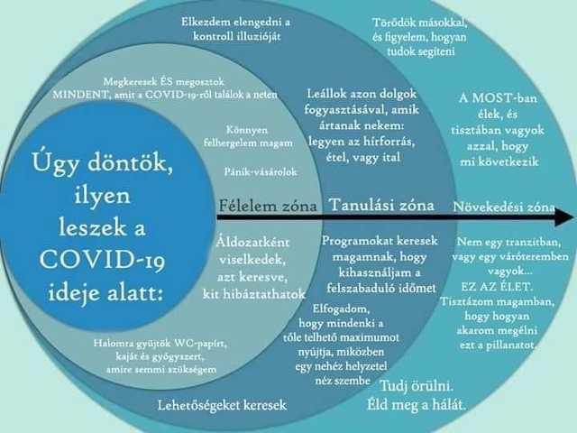 A koronavírus feldolgozásának szakaszai