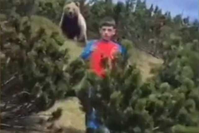 A medve és a fiú