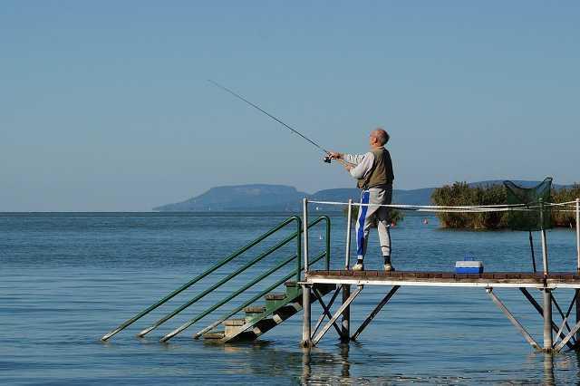 Balaton, horgáasz, horgászat