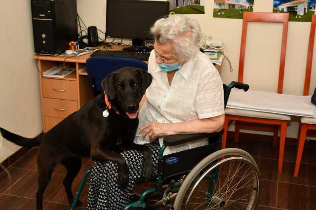 Meg sem állt Miskolcig a szombathelyi Marika néni, hogy Bóbitával ünnepelhesse 100. születésnapját