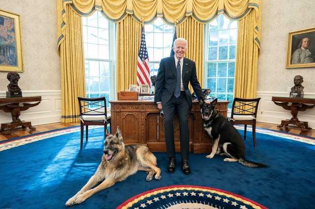 Joe Biden és kutyái a Fehér Házban