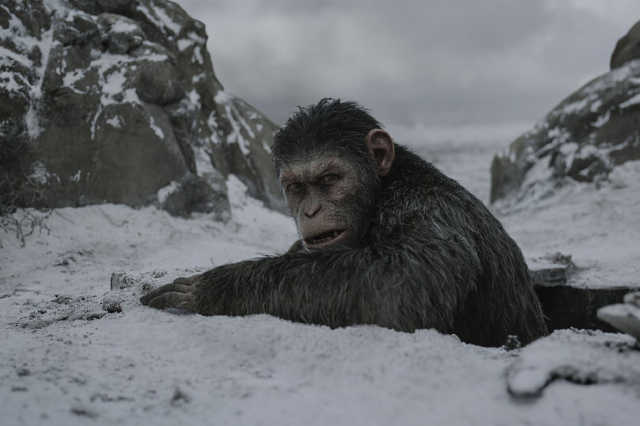 Majmok bolygója - Háború