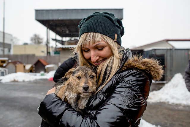 A Greencom munkatársai a Fekete István Állatvédő Egyesület menhelyén