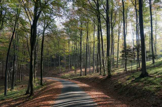Kőszegi-hegység ősszel