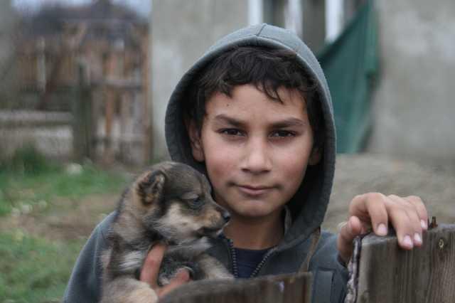 Roma gyerek