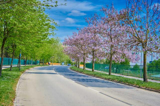 Szombathely legszebb utcái