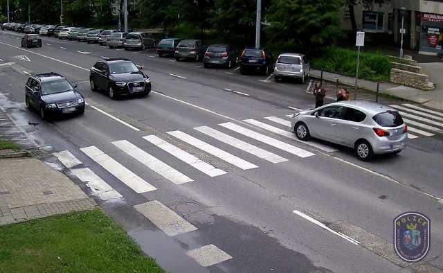 Zebra terv