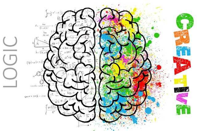 Kreatív agy