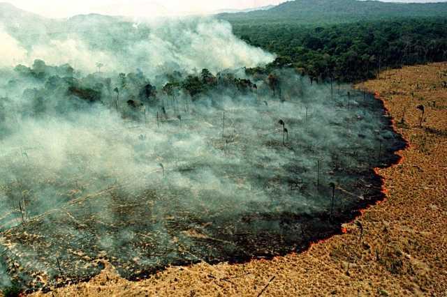 Erdőtűz az Amazonas őserdőben