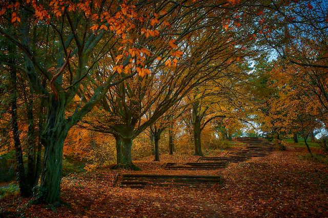 Ilyen volt az ősz Szombathelyen