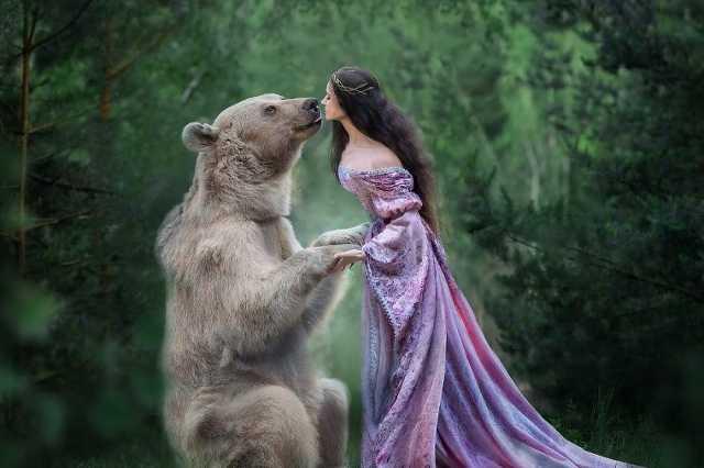 Sztyepan, a barna medve-modell