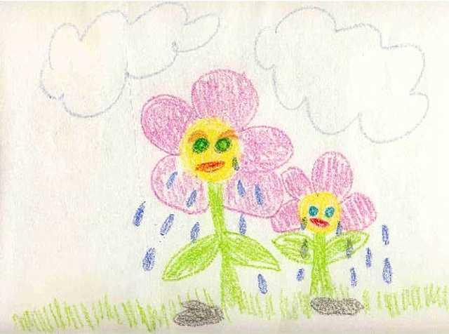 síró virág