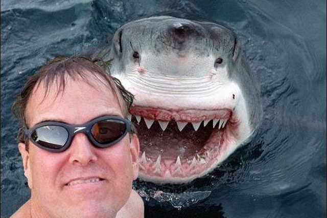cápa szelfi
