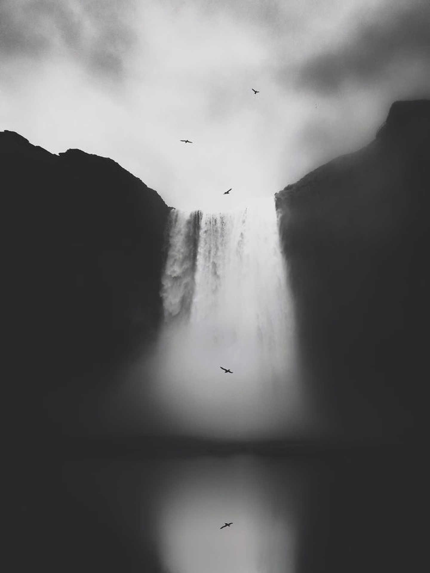 Természet - Lisi Li: 'Untitled'