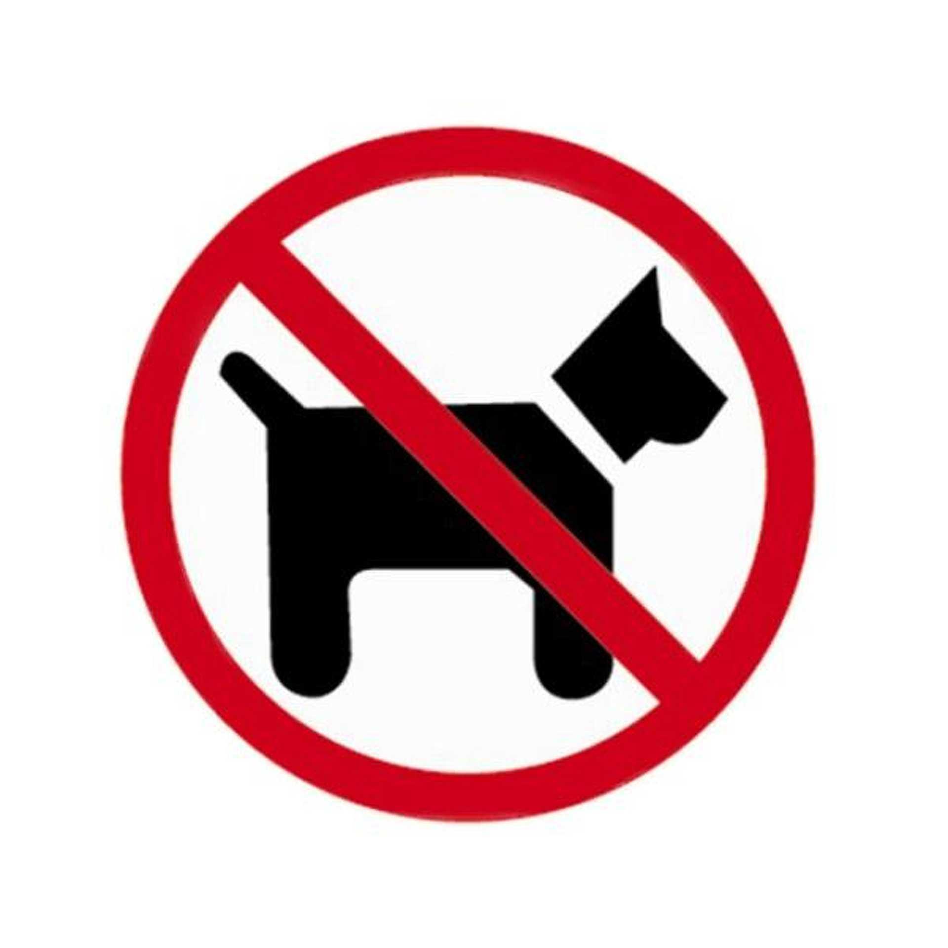 Tiltott kutya